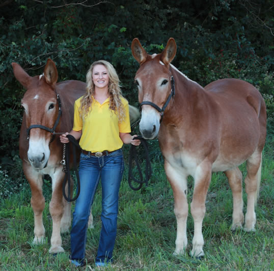 Florman Scholarship recipient Carley Brucks, flanked by the Mizzou CVM Mule Team Terry (right) and Tim.